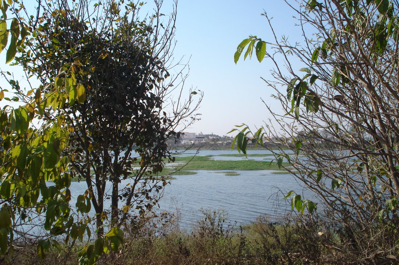 Jakkasandra Lake, Bengalore, Bengaluru, India